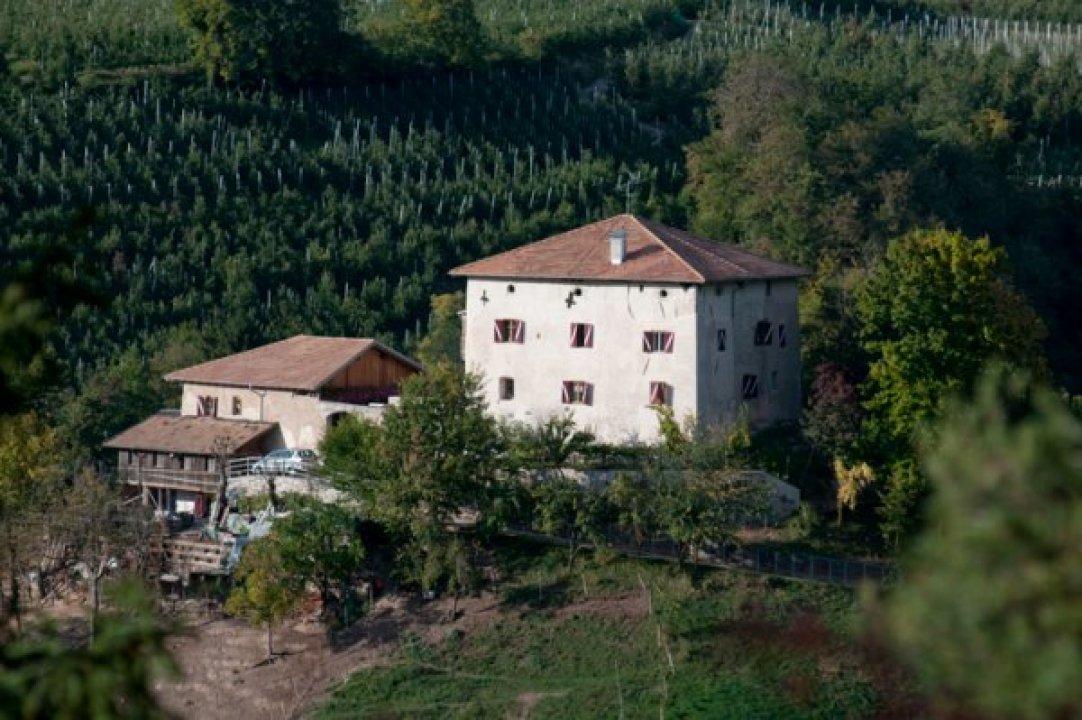Castello montagna fondo trentino alto adige 0013886 for Castel vasio